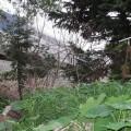 5671 Calle Pacific, Carpinteria, CA 93013