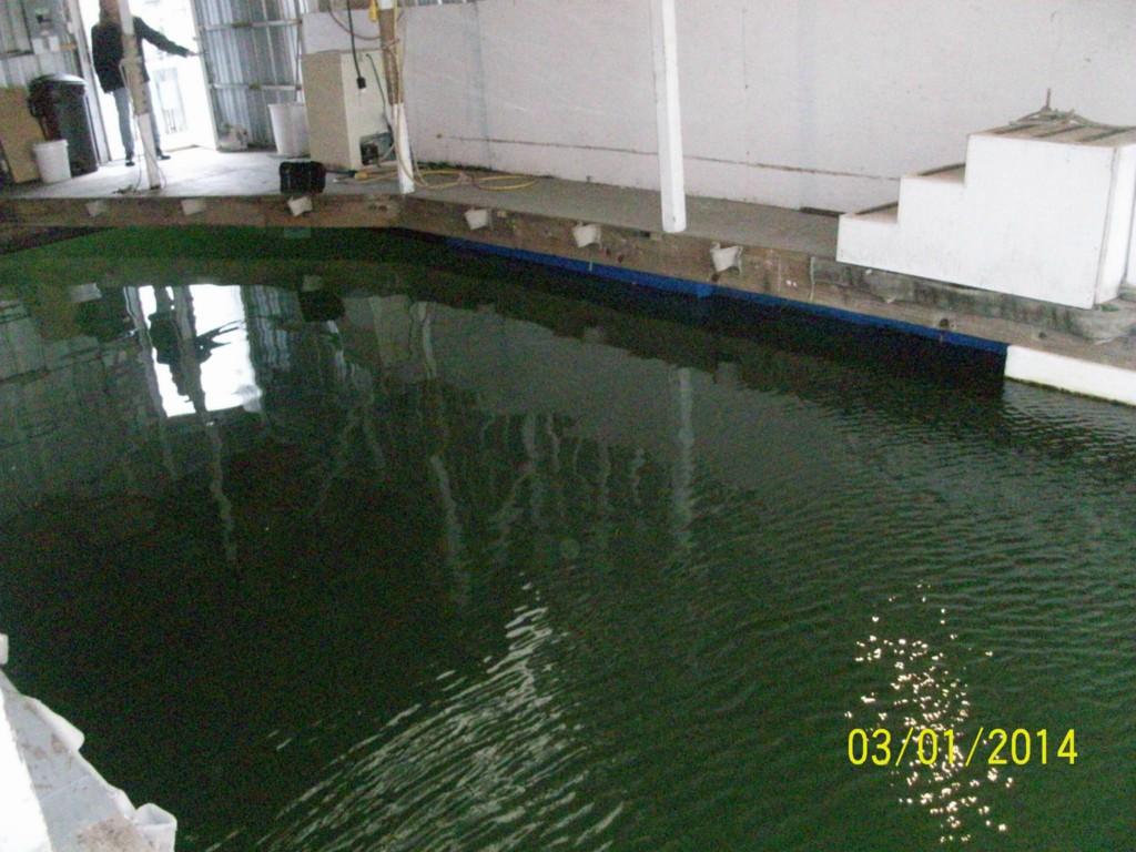 0 Dock N slip 4 14th St., Everett, WA 98201