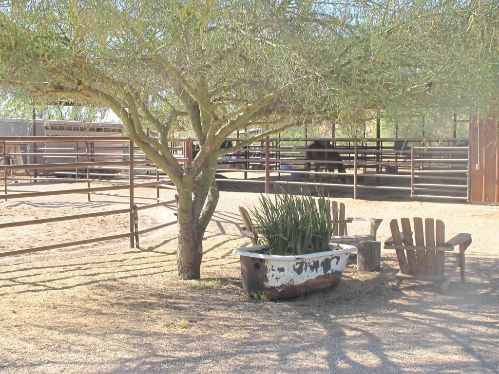 32905 N 140 St., Scottsdale, AZ 85262