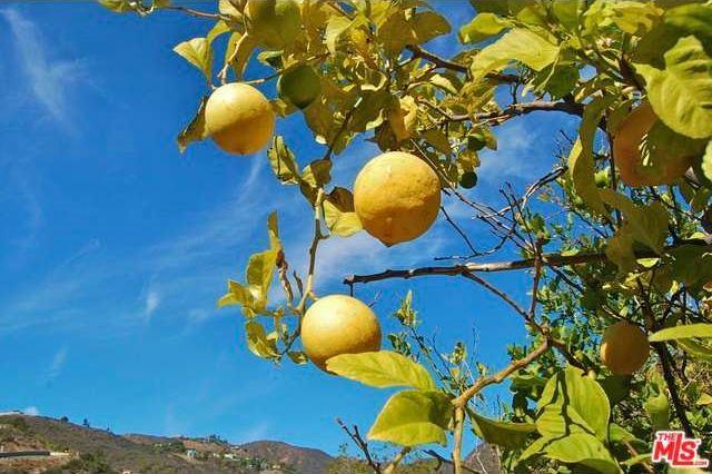 3806 Las Flores Canyon Rd., Malibu, CA 90265