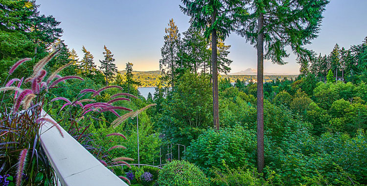 9231 SE 46th St, Mercer Island, WA 98040